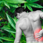 Mire jó a fájdalomcsillapító krém?